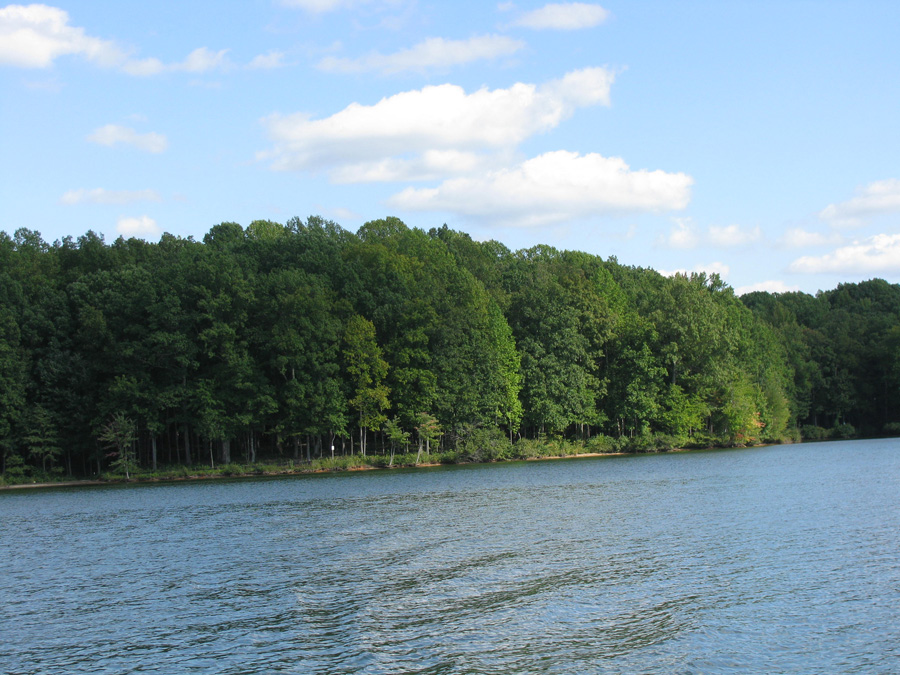 Mill Run at Lake Anna - Lot 41