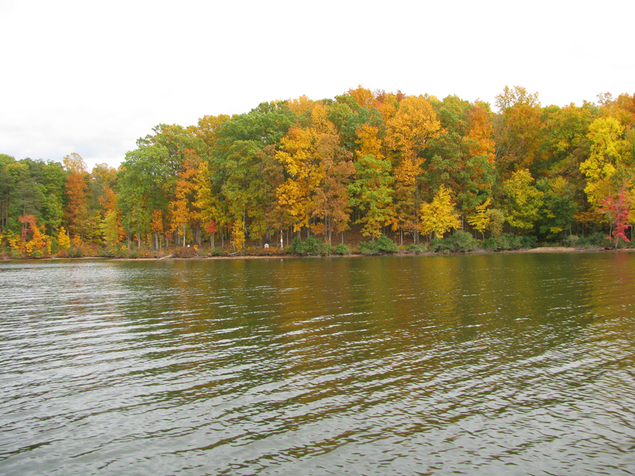 Mill Run at Lake Anna - Lot 51