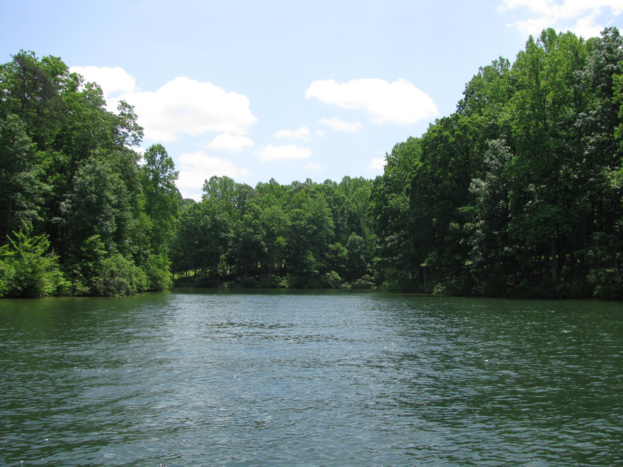 Mill Run at Lake Anna - Lot 34