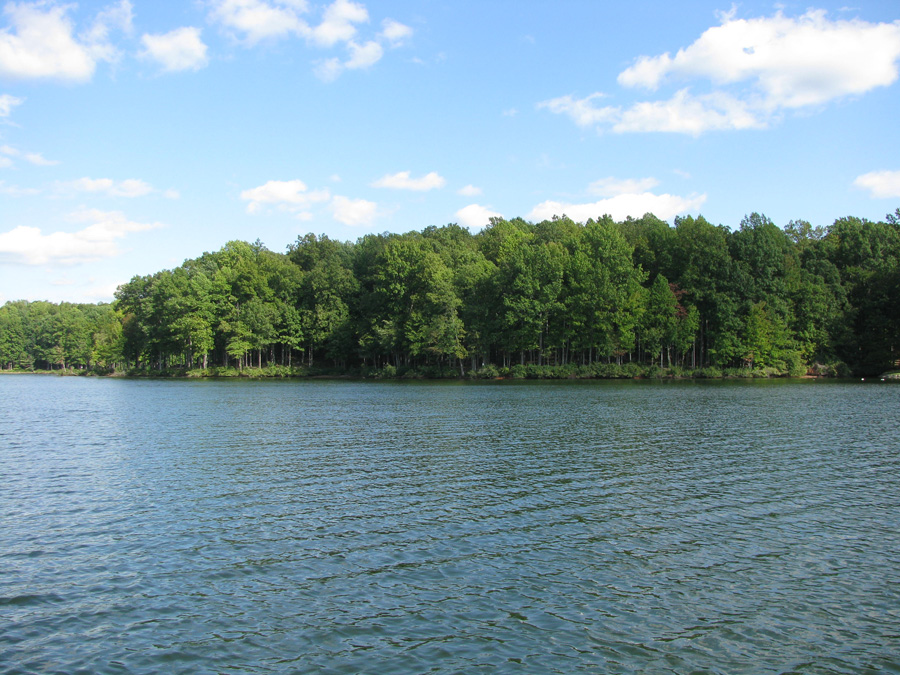 Mill Run at Lake Anna - Lot 42