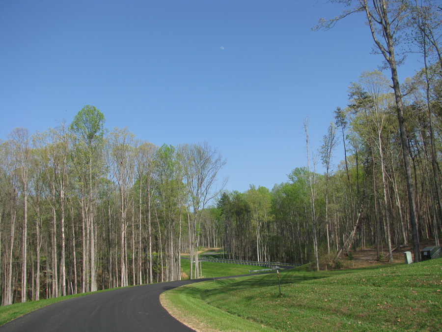 Mill Run at Lake Anna - Lot 90